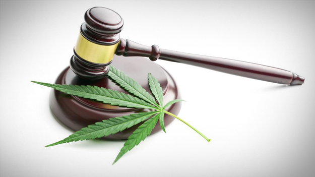 Photo of marijuana leaf on gavel to show the controversey of marijuana in the workplace in a HR trends blog