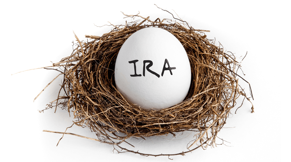 Goose egg showing IRA calculator